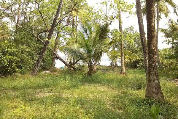 25 Cent Plot in Cherai